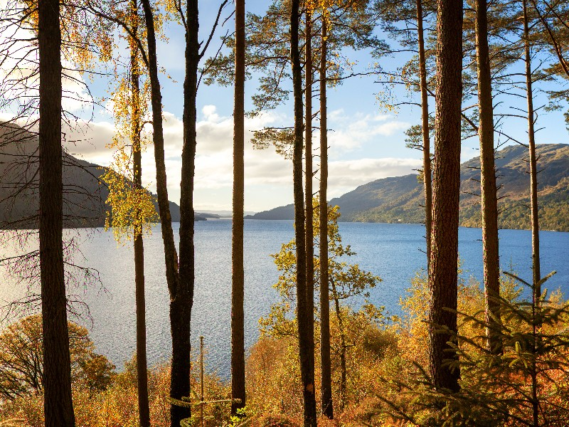 bigstock-Autumn-on-the-banks-of-Loch-Lo-145599728.jpg