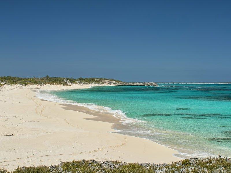Cat-Island-Bahamas.jpg